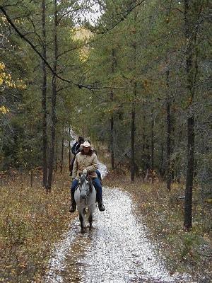 Invitations réciproques et échanges d'idées entre Horse Creek Guest Ranch à Fort Assiniboine en Alberta Canada et L'Etoile Chambres et tables d'hôtes sur le Chemin Stevenson en Lozère dans le Sud de la France.