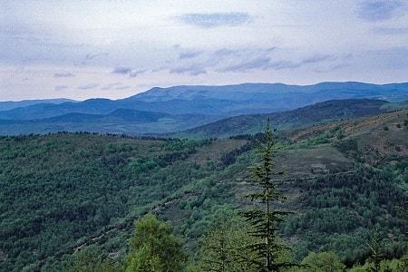 Mont Aigoual, le château d'eau des Cévennes