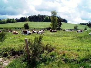 洛泽尔省拉巴斯蒂德皮伊洛朗6公里徒步路线