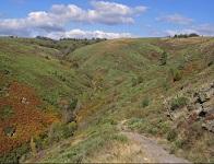 8km hike at La Garde-Guerin in Lozere