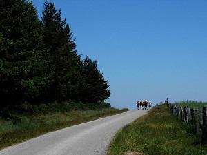 Circuit en vélo de 25km à La Bastide-Puylaurent en Lozère